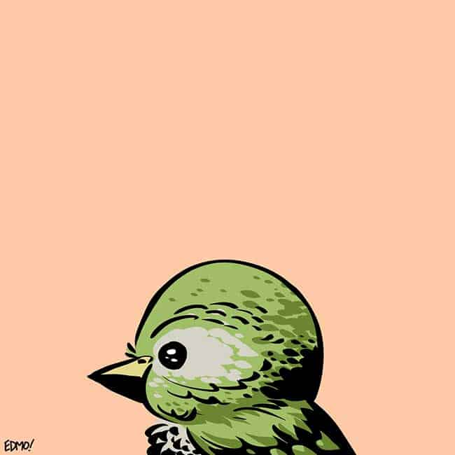 A fictional bird, drawn for fun